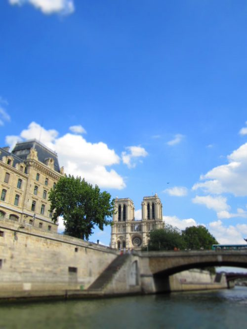 See Notre Dame in a scenic panorama