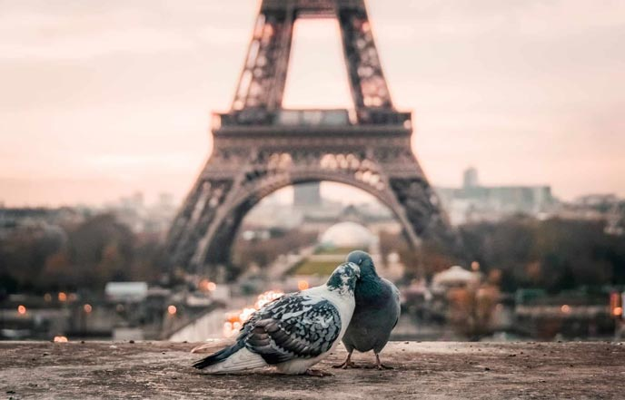 cheap Romantic Hotels in Paris for couples - Paris for couples and lovers to spend a romantic weekend