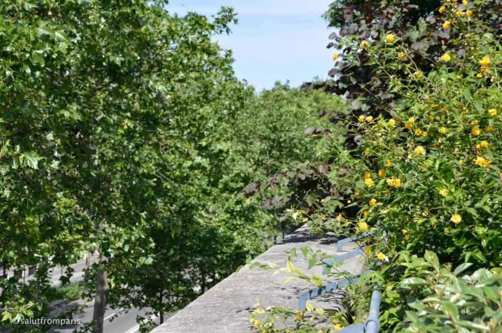 Promenade Plantée - le coulée verte René-Dumont