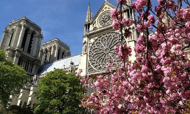 Spring in Paris – Best tips for traveling to Paris in spring time