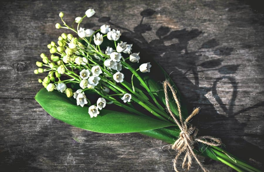 Lily of the Valley - traditionally offered on the 1st of May - you can buy them at every corner in Paris